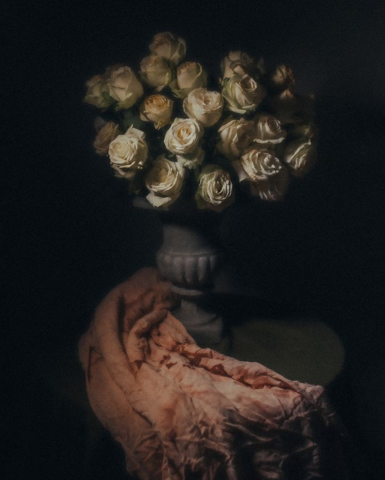 dramatic roses - arthurdamasceno | ello