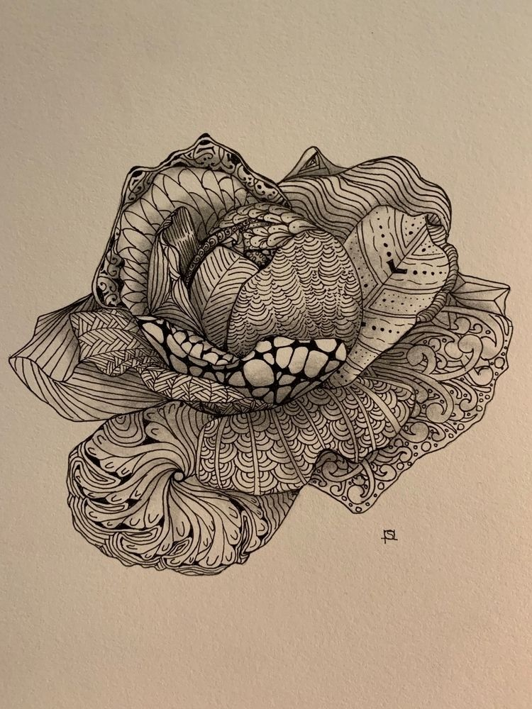 Rose tangle - ink graphite cred - steppielee | ello