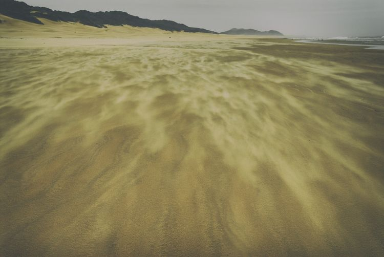 windswept London Africa - landscape - christofkessemeier | ello