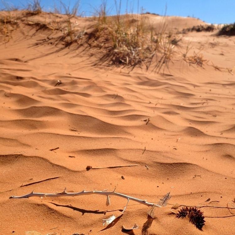 Coral Pink Sand Dunes, Utah, 5 - obscuraworks   ello