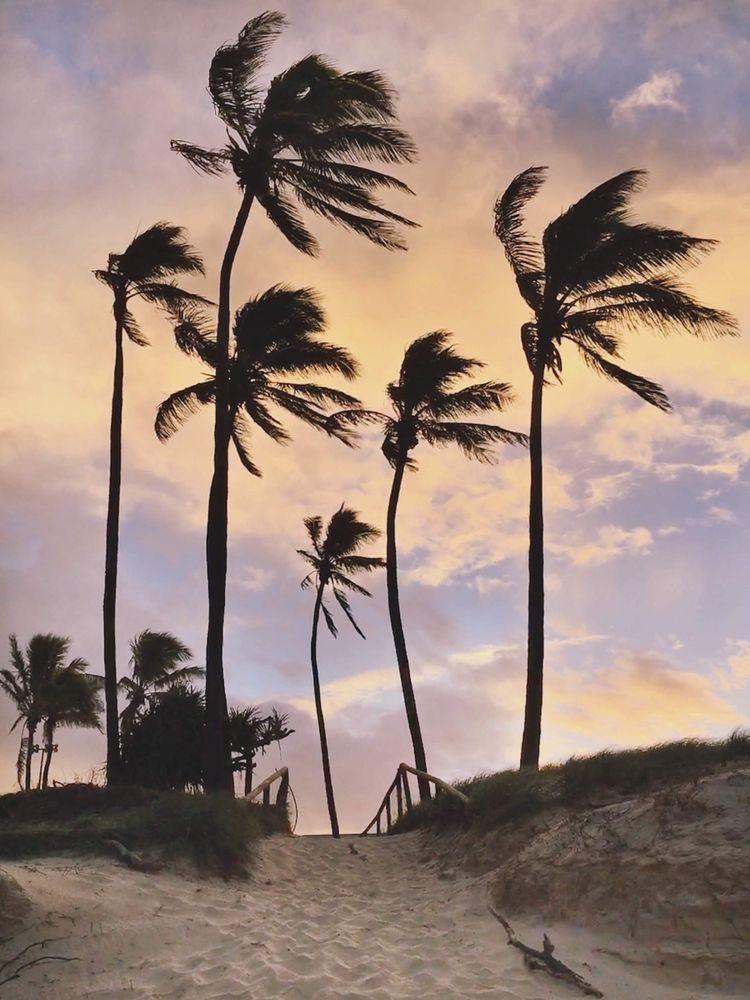 Sunset Breeze Main Beach, Gold  - bybianca | ello