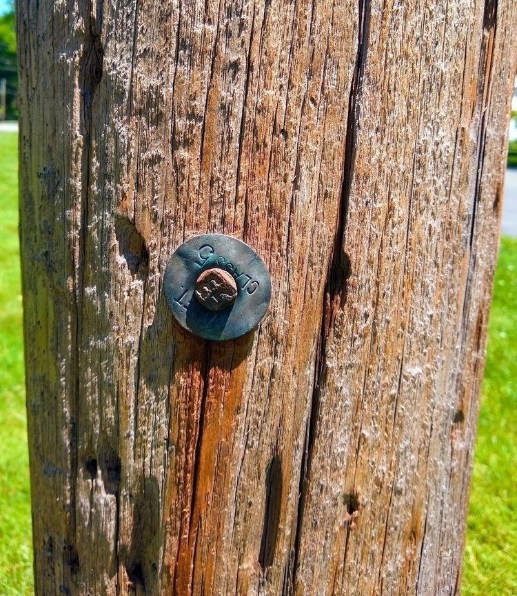 date nail utility pole property - rjavery | ello