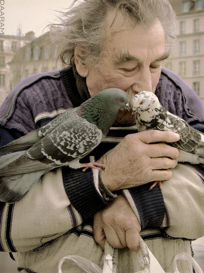 Birds Lover: man feeding kissin - daaram   ello