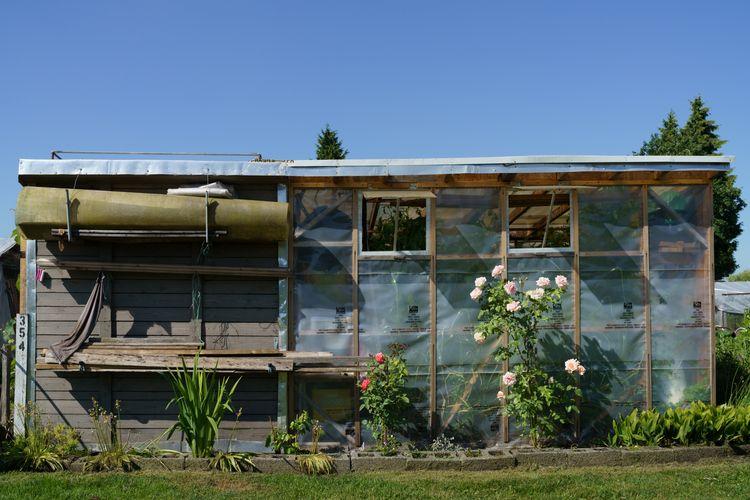 building garden, mid-summer. La - jimroche1   ello
