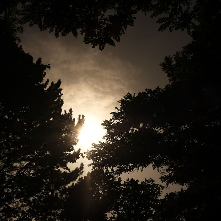 Summer evening - warm, mood, calm - chris_pigan | ello