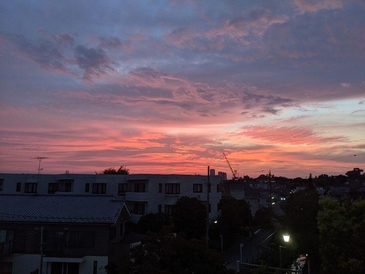 Super pretty sunset colors day - fokality | ello