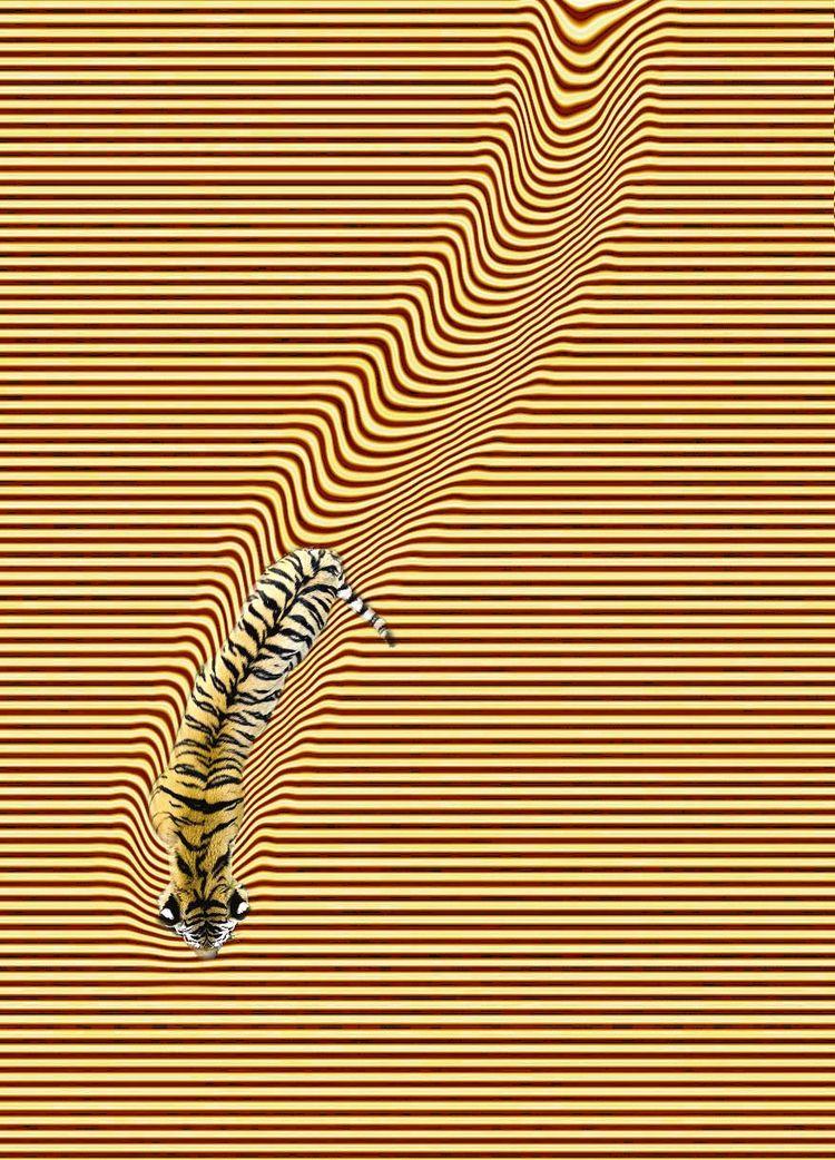 Tiger Lolos Bri .#surrealism  - elloart..@ello...#digitalart.#ellodigitalart. - zygzwurx   ello