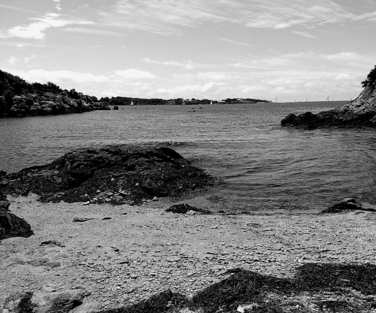 view West Cove, Fort Wetherill  - frederickfullerton   ello