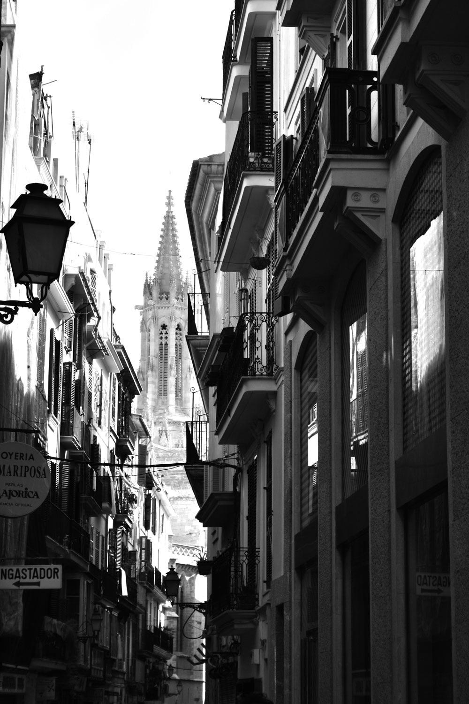 Palma de Mallorca Cathedral |  - blueskipper | ello