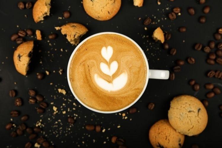 Save 30% Coffee Gator Home Bari - halfpricecouponcode | ello