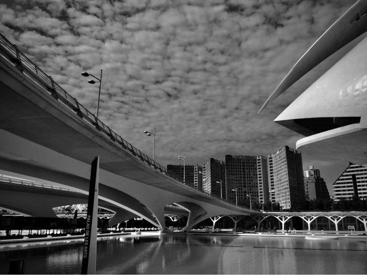 Bridge Ciutat de les Arts Ciènc - blueskipper   ello