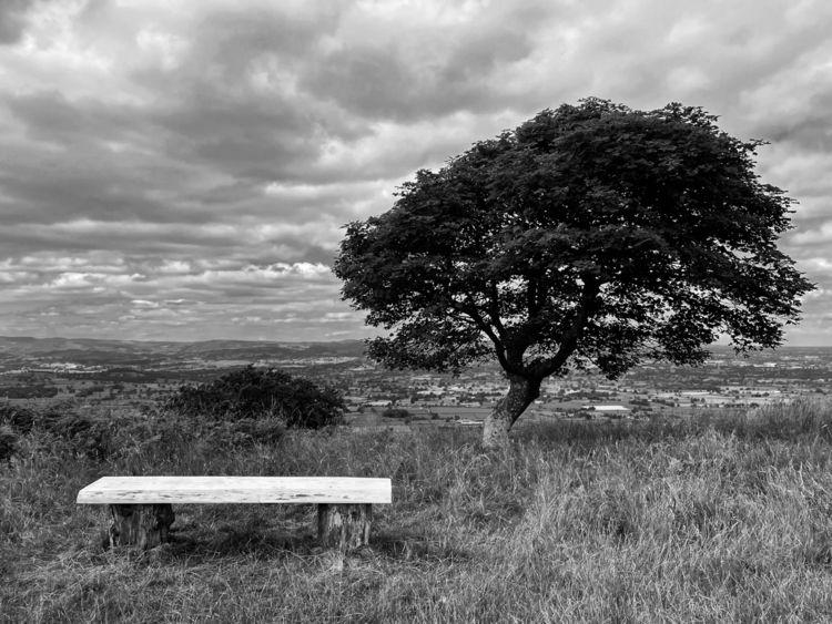 Lonley tree - fineart, blackandwhite - elizahermionephotography   ello