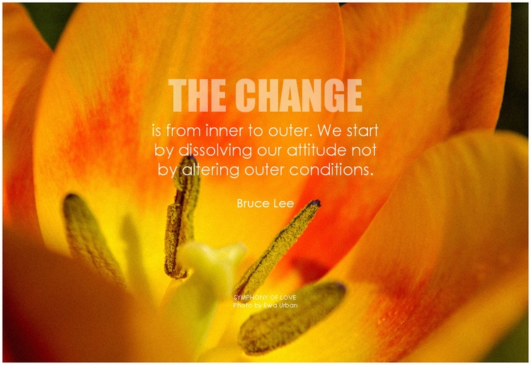 Bruce Lee The change is from inner to outer. We start by dissolving our attitude not by altering outer conditions.png