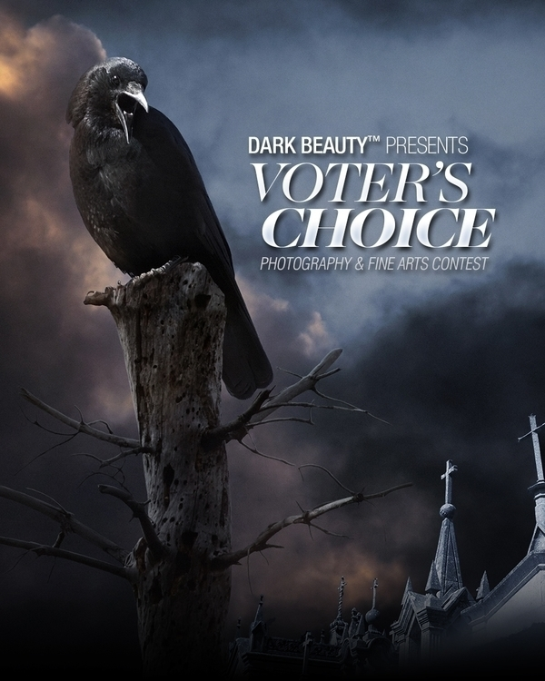 Voter's Choice 21317 FB portrait.jpg