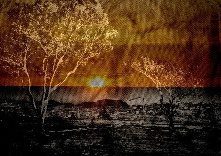 collage 37-044.jpg