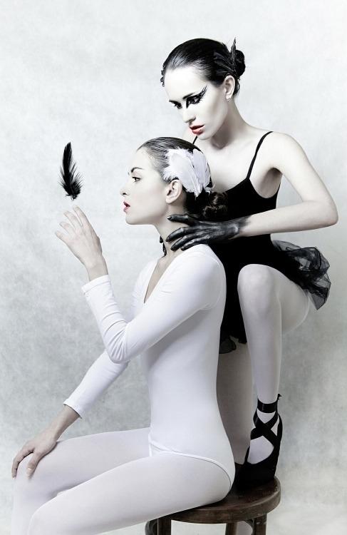 White swan black swan.jpg