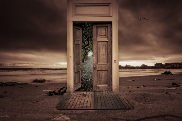 beach door with seagul.jpg