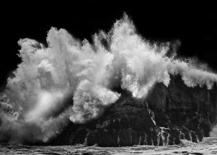 The Wild Waters in This Roar.jpg