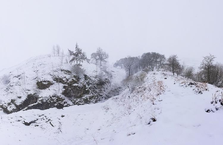 SnowFallShareOnline.jpg