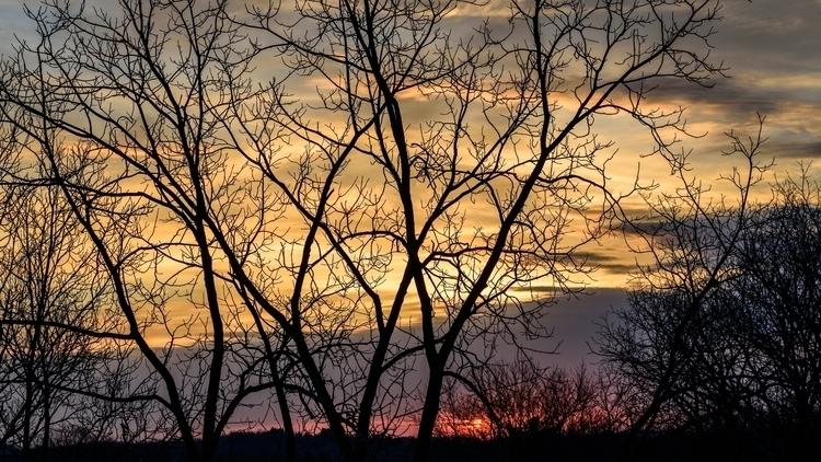 Early Spring Sunrise.jpg