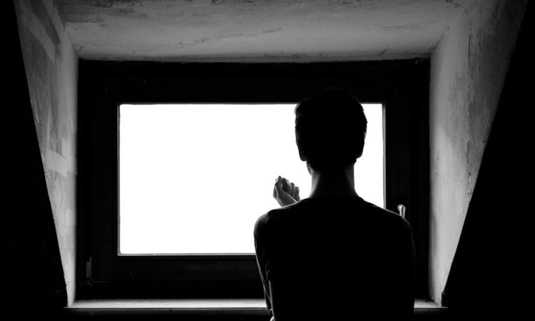 Fensterfilm_klein.jpg