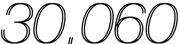 30060.jpg
