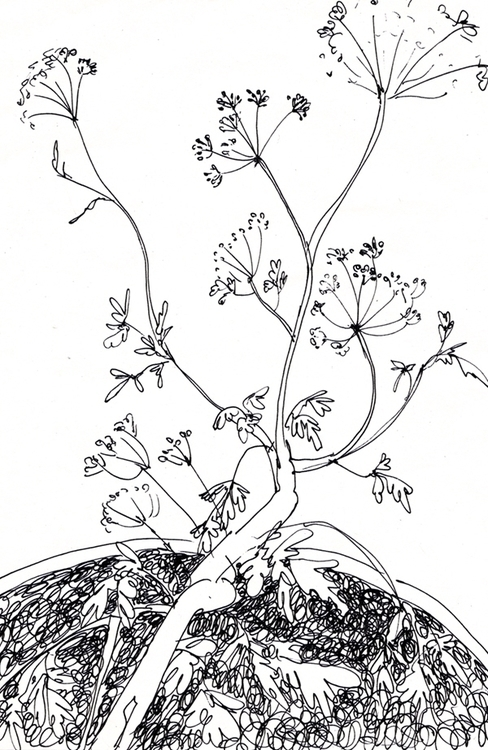 art-16-04-09.jpg