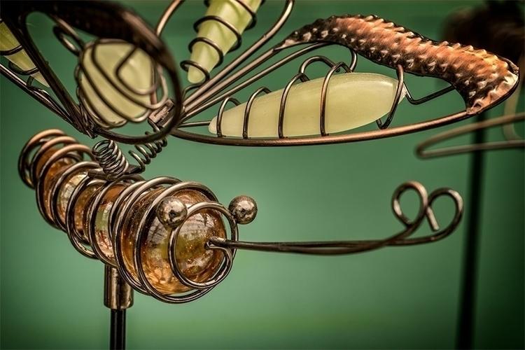 web-Dragonfly.jpg