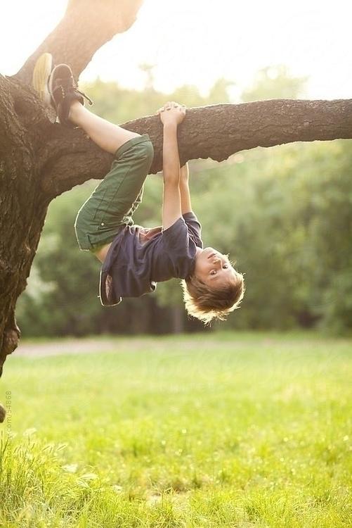 trepar arbre.jpg