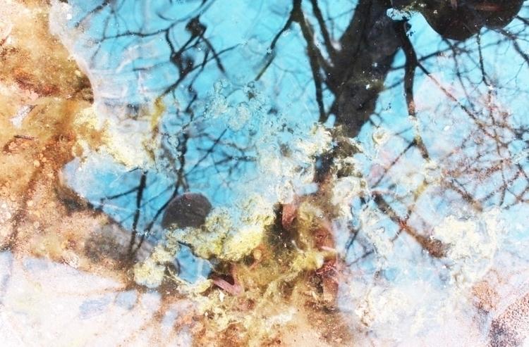 poster-reflection.jpg