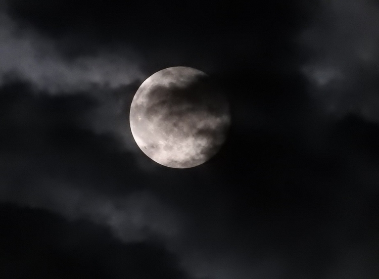 22. Full Pink Moon 1.jpg