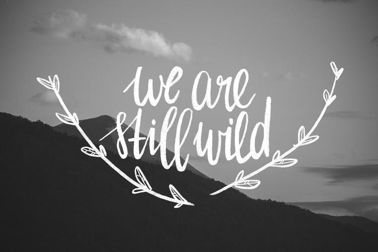 We are still wild photo branches.jpg