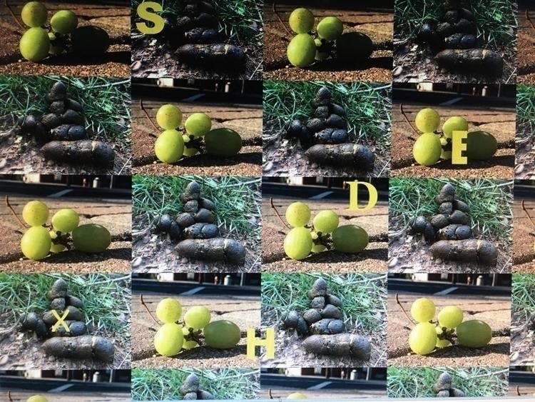 3E4DBCD5-476E-44DF-B038-EC5D8C603C64.jpg