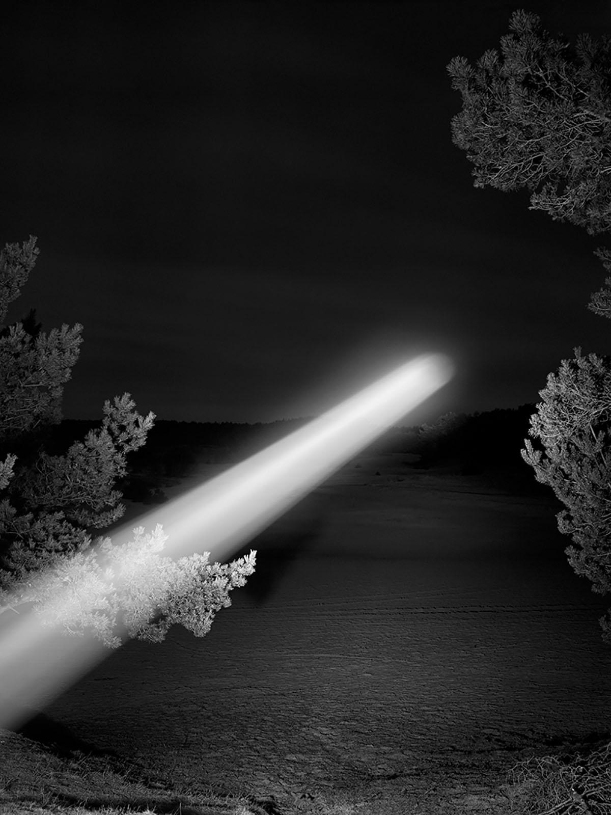 Light, Carson Lynn visible, inf - elloblog | ello