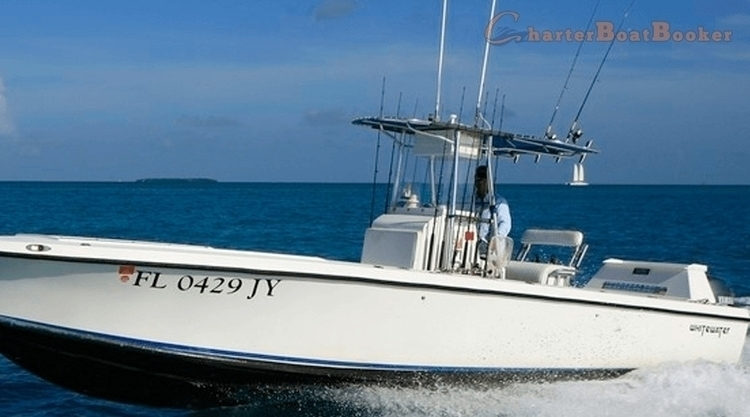 Key west fishing charters plent for Best fishing charters in key west