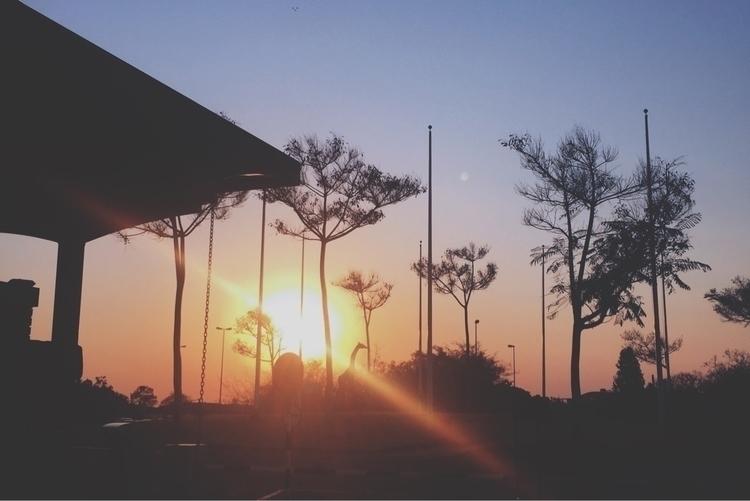 Zimbabwe airport 🌸 - malindiaustin | ello