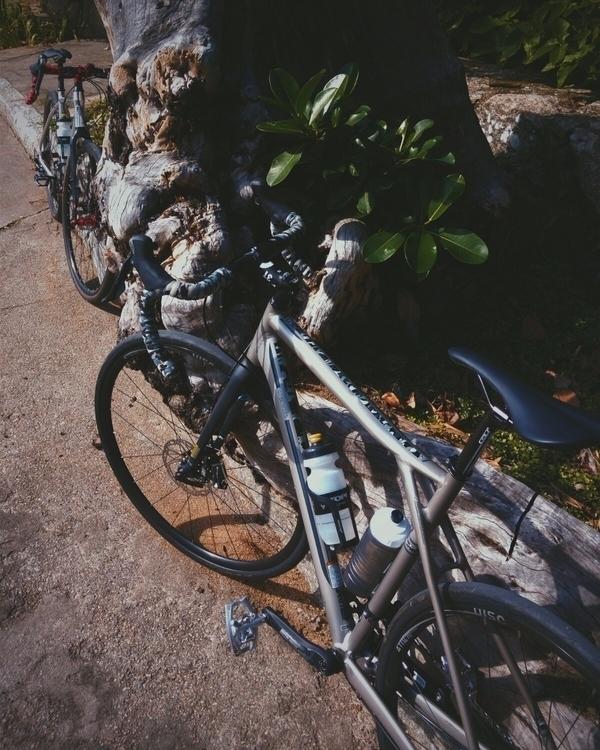 cycling bikes rideyourbike phot - danielgafanhoto | ello