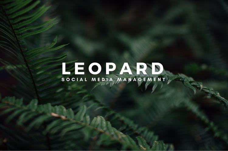 ...🎯 socialmediamarketing socia - socialleopard | ello