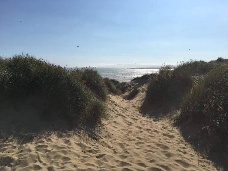 dunes sea beach sand - howsweetthesting | ello