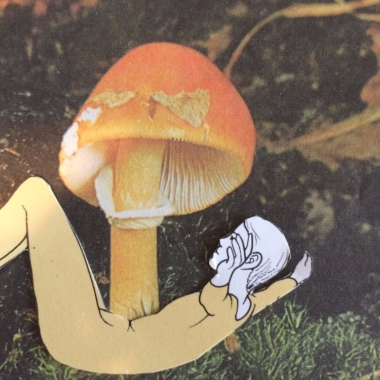 Unglued Series. Mushroom 04. yo - danielletcole | ello