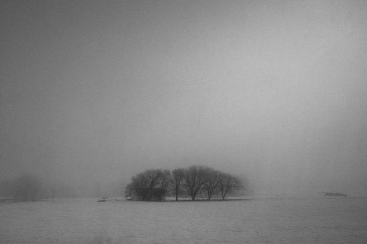 Week 3|52 Land Nearly forgot we - winter_sun | ello