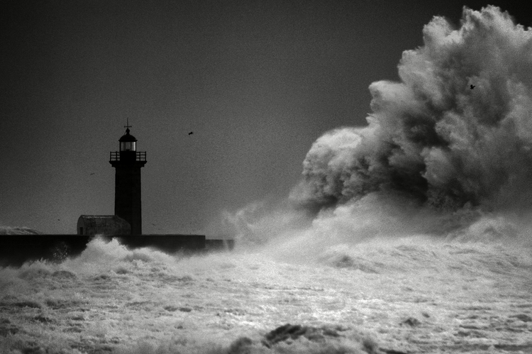 Big storm - sergioleopoldocastro | ello