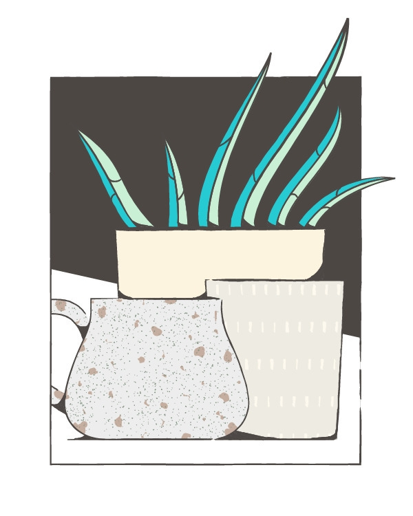illustration coffee mug aloe - taylorwhale | ello
