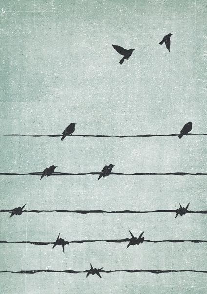 """Freedom"". International Holoca - davidebonazzi | ello"