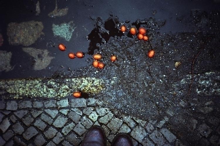 sidewalk lifes (tomato tomato)  - tinakino | ello