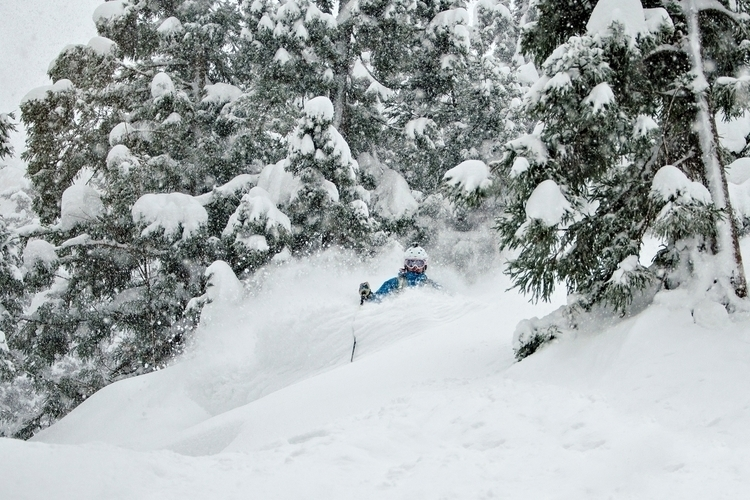 Skiing - rikardlandrin | ello