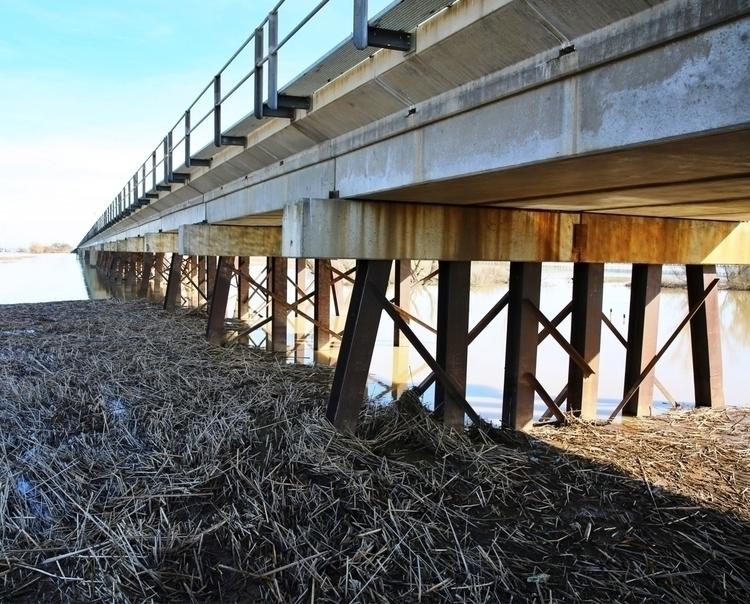 Walked levees yesterday. rain w - entropyalwayswins | ello