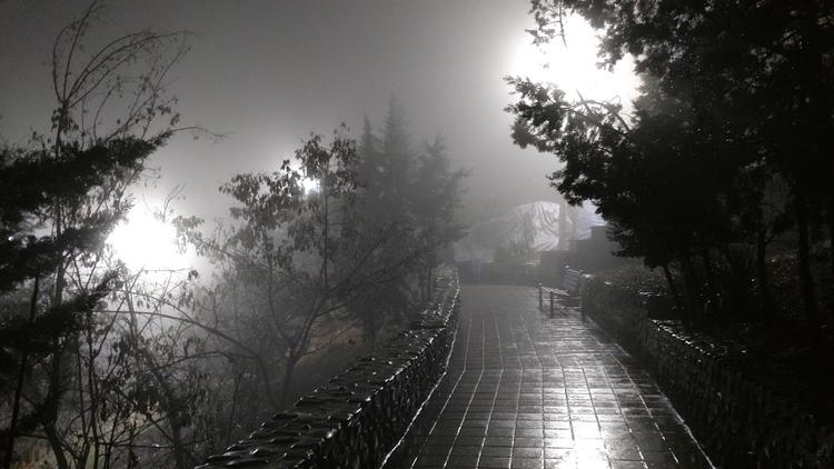 Foggy Midnight - jaydee-farshad | ello