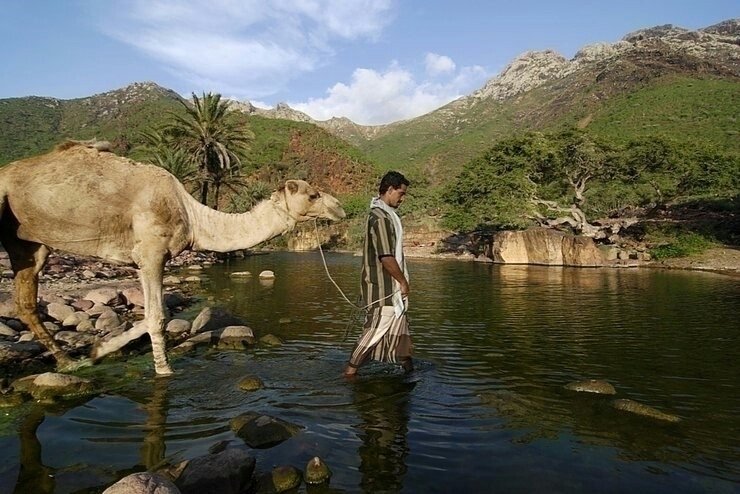 yemen اليمن - shaifameri   ello