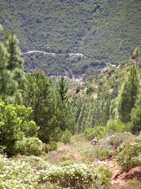 Sardinia (unofficial) downhill  - lc8 | ello